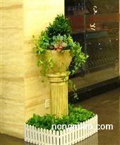 成都植物租赁租摆立体绿化居室的植物
