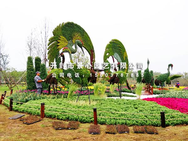 五色草立体花坛,植物雕塑