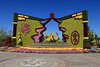 五色草造型 植物雕塑 立体造型花坛造价施工