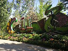 大运河船,植物绿雕,动植物造型设计制作