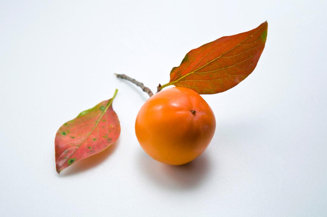 英语海报关于柿子