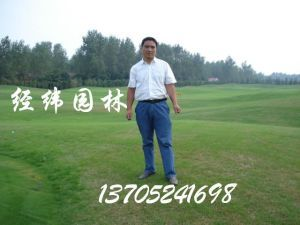 沭阳县经纬园林绿化工程有限公司