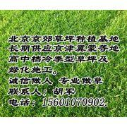 北京顺义胡军个体经营