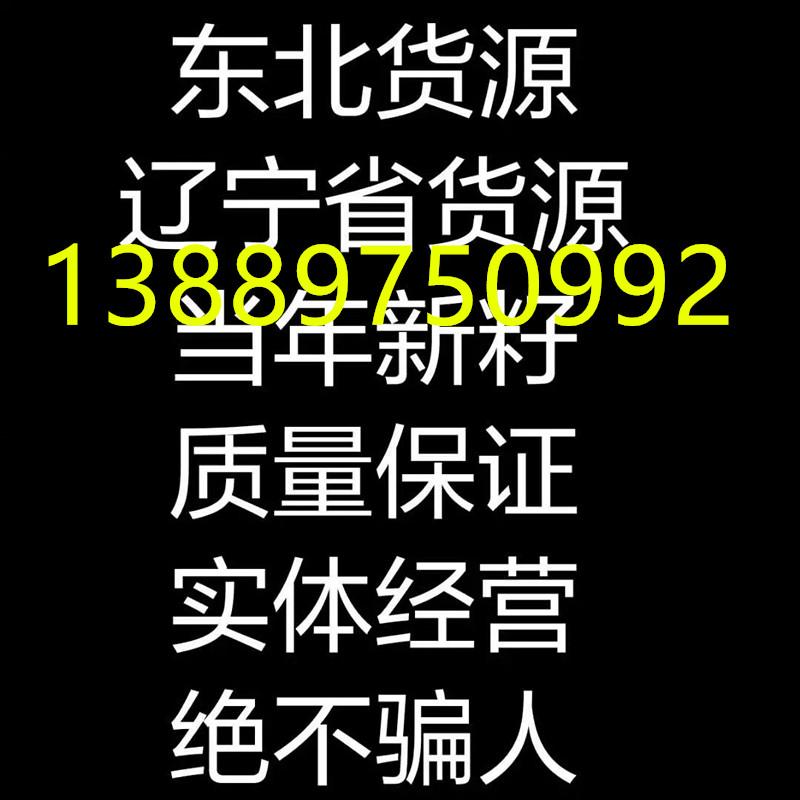 AA标语_副本电话.jpg