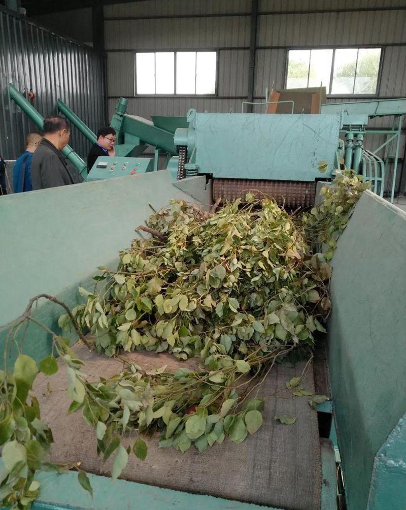 农苗网新闻图片