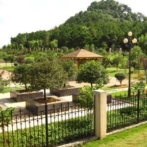 别墅庭院绿化|其他图片及价格-北京京平安景园林绿化