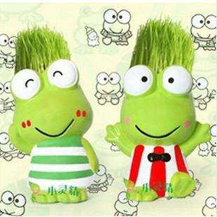 桌面情侣蛙迷你盆栽一对陶瓷草头青蛙一套植物青草头种植批发