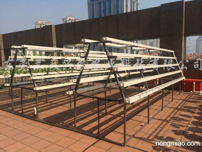供应家庭小型农产蔬菜水培设备