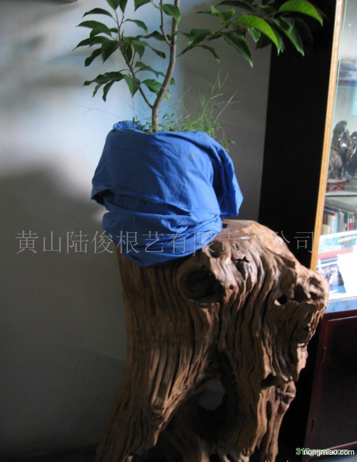 供应根雕花架|榆树图片及价格-黄山陆俊根艺有限责任