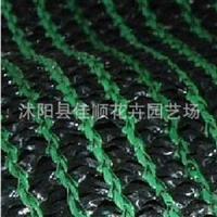 进口加厚彩色遮阳网 黑网绿丝 庇荫,降温 4针密度 秒杀价