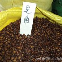 皂角树种子 皂角种子 皂角树籽