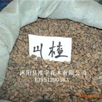 批发优质进口花卉种子种苗-原装进口高档山楂种子(图)