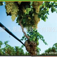 果树滴灌管葡萄蔬菜草莓滴管合肥阜阳萧县六安蚌埠热销中