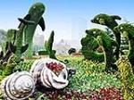 植物雕塑、花卉造型、立体花坛施工制作