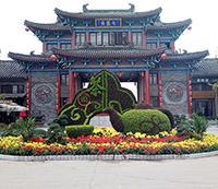 茶壶造型,植物雕塑,五色草造型设计制作