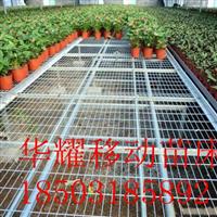 移动苗床-移动苗床价格-厂家供应