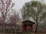 北京绿芦园农业科技有限公司
