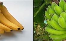 香蕉有哪些营养价值?|芭蕉有哪些营养价值