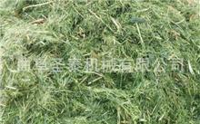 玉米秸秆培养料春菇冬种栽培