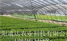 新型农业有哪些,都有什么作用?