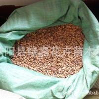 批发新采果树种子 山楂种子 保质保量