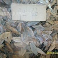 常年批发供应各种新采中药材种子 杜仲种子 确保品种质量 可到付