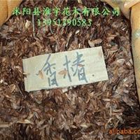 批发优质进口花卉种子种苗-原装进口高档香椿种子(图)