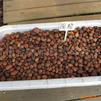 供应优质陶粒(2-3cm)