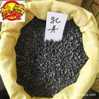 供应进口牡丹种子 牡丹种子价格 牡丹种子批发 价格优惠