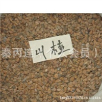 出售食用花卉种子 山楂种子 健脾开胃消食化滞活血化痰15元1斤