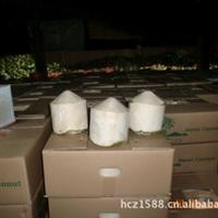 厂家常年供应海南热带特产椰子——水果椰青