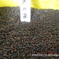 【苏北种子】黄山栾种子,栾树种子,2012新采集。出芽率高