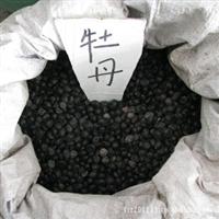 洛阳牡丹 牡丹种子 牡丹花种子 品种齐全 质量保证 假一罚十