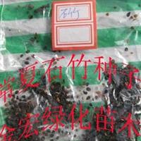 供应五彩石竹种子 常夏石竹种子 金鸡菊种子