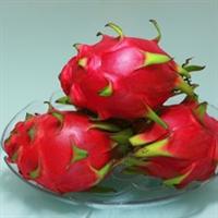 紫红肉火龙果5月上市预订优惠