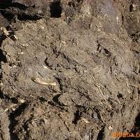 东北草炭,育苗基质,草炭土,泥炭,优质草炭
