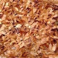 供应香椿种子,红油香椿种子  量大优惠
