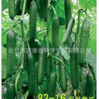 世界较好品种 83-16水果黄瓜 0.65一粒 保证正品