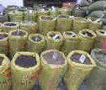 批发优质连翘种子/连翘种子价格/连翘种子栽培方法