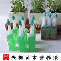 【兴梅】水培植物必备花卉花草盆栽土培/水培通用营养液