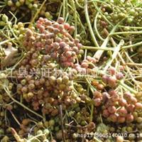 专业供应石楠种子批发苗木种子