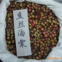 批发各种优质花木种子-美人蕉种子