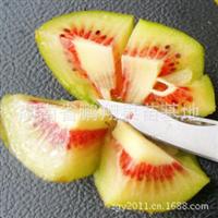 果树苗木特早熟红心猕猴桃树苗-楚红猕猴桃苗果大,风味浓甜可口