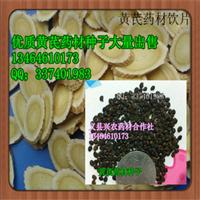 东北高产优质黄芪药材籽供应