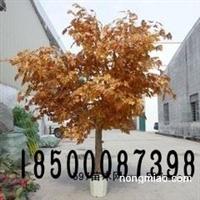 北京仿真金榕树厂家定做批发租凭舞台仿真树