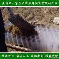 快速装土蜂窝育苗袋 容器袋 营养袋 工厂直销 一流产品