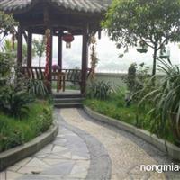 绵阳室内景观设计收费 绵阳空中花园设计价格 莹光景观