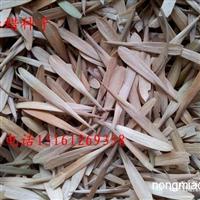 沭阳苏新花园最新供应白蜡种子  林木种子 批发零售