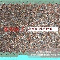 紫荆种子价格河北沧州紫荆种子最新价格