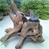 供应鳄鱼花架根雕